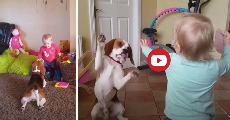 Ilyen, ha a kutyát teljes értékű családtagként kezelik!