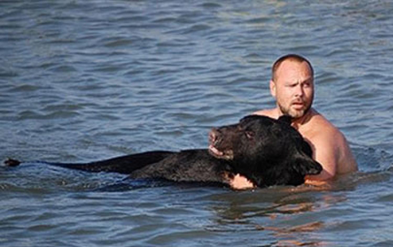 A hatóságok lelőtték a medvét, de a férfi megmentette a fulladástól!