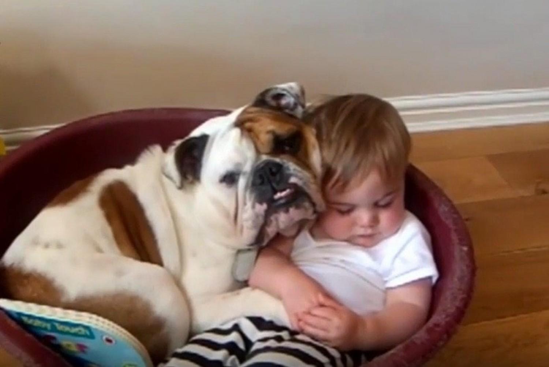5 jó ok, hogy miért jó ha háziállat mellett nő fel a gyermeked!
