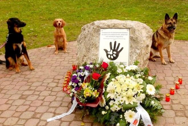 Újpesten emlékhelyet állítottak a bántalmazott állatoknak!