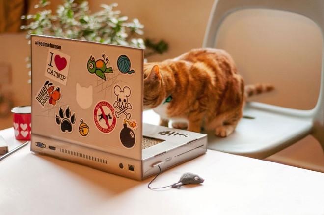 Már macskáknak is gyártanak laptopot!